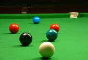 Afbeelding - Stop met beleefdheid start met feed for position is als spelen van snooker - ClickerCoach