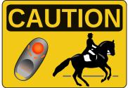 Afbeelding - Overstappen naar clickeren met je paard crossover horses crossover trainers clickertrainen met paarden - clickercoach